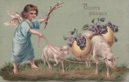 Buona Pasqua, Angelot Et Moutons (16133) - Pâques
