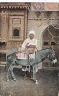 Egypte -  Type - Homme Et Son âne - Postal Mark Alexandria - Egypt