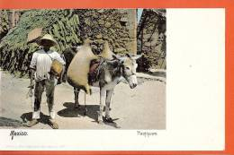 Q0968 Tlachiquero Mexico. Ane. Pioneer. Non Circulé. - Mexique