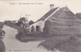 Coxyde Une Chaumière Dans Les Dunes  N° 2085 - Koksijde