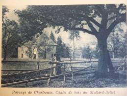Pays De Chartreuse , Chalet En Bois Au Mollard Bellet , Vieille Paysanne , Héliogravure Sépia Bleue De 1931 - Historische Dokumente