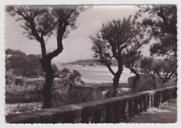 BIARRITZ - LE ROCHER DE BASTA ET LE PHARE - Biarritz