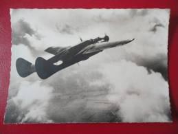 """P 61 : """" Veuve Noire """" - Avions"""