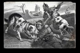 Nos Précieux Auxilliaires De La Croix Rouge - Chiens Au Servide Des Soldats - War Dogs - Illustration Lesbounit - Dogs
