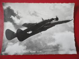 """P 61 """" La Veuve Noire"""" - Avions"""