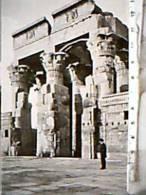 EGITTO EGYPT KOM OMBO  ANIME N1920 DZ7189 - Egypt