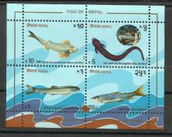 NEPAL,1993, Fishes, Miniature Sheet Plus Set Of 4 V, MNH, (**) - Nepal