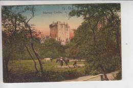 IRL - BLARNEY CASTLE 1913, Stamp Missing - Cork