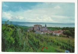 GRADOLI - BOLSENA - VITERBO - Viterbo
