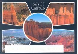 USA - Utah - Bryce Canyon - National Park - Bryce Canyon