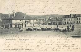 MONEIN PLACE MARCADIEU ANIMEE TROUPEAU DE MOUTONS 1900 PYRENEES 64 - France