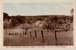 Saint Martin D Auxigny Les Flonds Vue Sur La Foret D Allogny - Autres Communes