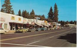 Paradise CA California, Street Scene, Paradise Drug Store, TV Sign, Medical Office, C1970s Vintage Postcard - United States