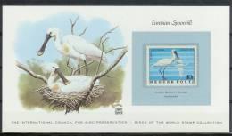 Mkt084kb FAUNA VOGELS LEPELAAR SPOONBILL BIRDS BIRD PRESERVATION VÖGEL AVES OISEAUX HUNGARY CARD WITH STAMP 1977 PF/MNH - Birds