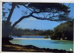 Nouvelle Calédonie-- Baie De Kanumera Iles Des Pins (petite Animation),cpm  N°196 Photo Pacific Color éd Solaris Nouméa - Nieuw-Caledonië