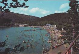 Lac Chambon-  ** Belle CARTE NEUVE Animée- Années 1980** Ed André N°63 L.8 - France