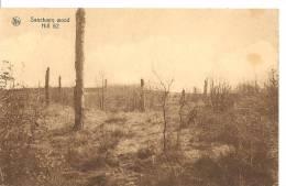 Cartes De 1914 - 1918     Sanctuary Wood - France