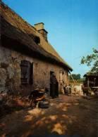 CPSM  (15)      CASSANIOUZE   -  Une Ferme (Traite Des Chèvres) - France