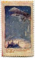ERINNOFILO RICORDO BOMBARDAMENTO DI PADOVA DA PARTE DEGLI AUSTRIACI 28-29 DICEMBRE ANNO 1917 - Erinnofilia