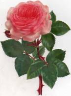 Joli Chromo En Decoupis ,fleur De Roses Et Feuilles ,gd Format (19 / 15 ) - Fleurs