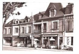 CABOURG. - Hotel De La Terrasse (face Au Square). Spécialité De Crustacés. - Cabourg