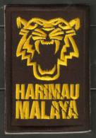 MALAYSIA MALAYA TIGER FOOTBALL PATCH CHAMPION AFF CUP - Patches