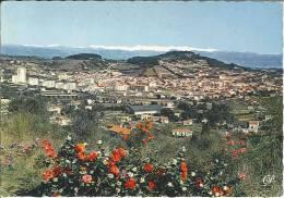 CPM 06 - Vallauris - La Ville Aux Cent Potiers Entre Fleurs Et Neige - Vallauris