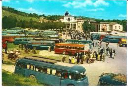 S. GABRIELE DELL'ADDOLORATA (TE) - SANTUARIO-BASILICA - F/G - V: 1962 - VECCHI AUTOBUS - Teramo