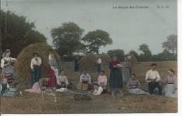 5153 - Le Repos Des Faneurs - Cultures