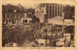 YVETOT Place Des Belges, Foire Aux Bestiaux - Yvetot