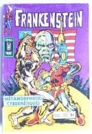 PETIT FORMAT FRANKENSTEIN 13 AREDIT (3) - Frankenstein