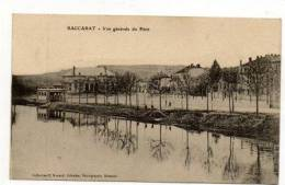 Baccarat    Vue Générale Du Pâtis - Baccarat