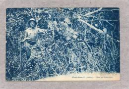 32867      Gabon   -      Port  Gentil     -  Dans  Les  Paletuviers,   VGSB  1931 - Gabon