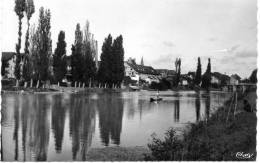72 - La Suze - Piscine Et Bords De Sarthe - 1952 - La Suze Sur Sarthe
