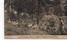 TRIBOMONT - Classe De L´Union Nationale Des FEDERATIONS MUTUALISTES De BELGIQUE 1934 - TIMBRES TAXES - Herve