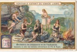Evolution Du Commerce Et De L'industrie TB - Liebig