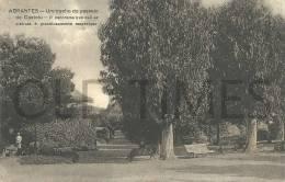 PORTUGAL - ABRANTES - UM TRECHO DO PASSEIO DO CASTELO - 1915 PC - Santarem