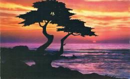 CALIFORNIA - PACIFIC SUNSET - MONTEREY Peninsula - TBE, Carte Neuve Petit Format - Altri
