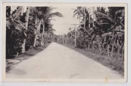 GUAM - Road Between Agana And Sumay - Photo Postcard - Guam