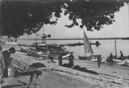 Environs De MARSEILLE - Le Petit Port De Pêche De L´ Estaque - L'Estaque