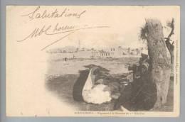 Ägypten Alexandrie 1902-10-10 Foto - Egypte