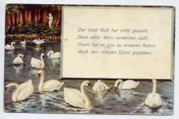 Allemagne--BERLIN--Cygnes--Der Liebe Gott....................-1910---Freundliche Grusse  Sendet - Allemagne
