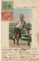 Montevideo Gaucho Copia De Un Cuadro De J. M. Blanes Circulada 1903  Testasecca Etat Moyen - Uruguay