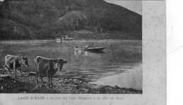 MACCAGNO CON  PINO  E VEDDASCA  , Lago D´ Elio , Lago Delio , - Varese