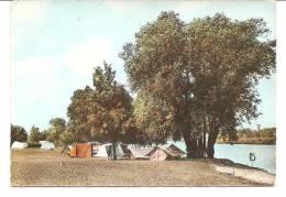 D-- 21-- Cpsm-- Pontailler Sur Saone -- Plage  - Camping ---- A Voir - France