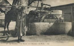 La Marsa No 9 La Source Et Le Chameau A La Noria LL Moulin Water Mill Close Up - Tunisie
