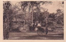 21095- SAIGON Coin Jardin Botanique -L Crespin 92 - - Viêt-Nam