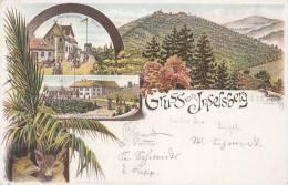 Gruss Vom Inselsberg, LITHOGRAPHIE, Gothaisches Hotel, Preussischer Gasthof, Fuchs, Palme, 1899 - Hotels & Gaststätten