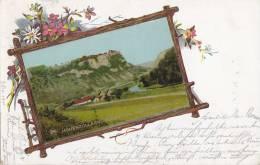 Schloss Werenwag, Donautal Bei Beuron (aufgeklebtes Bild), LITHOGRAPHIE: Astrahmen, Wiesenblumen, 1901 - Schlösser