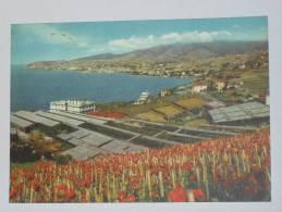IMPERIA - San Remo - Veduta Da Levante - Coltivazioni Di Garofani - Sanremo - San Remo